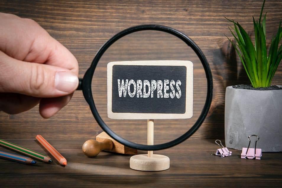 Quali Plugin installare su Wordpress I 17 Realmente Essenziali