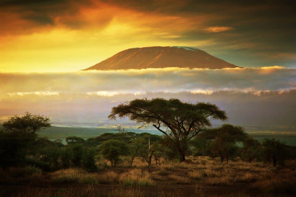Kilimanjaro, Savana, Kenya