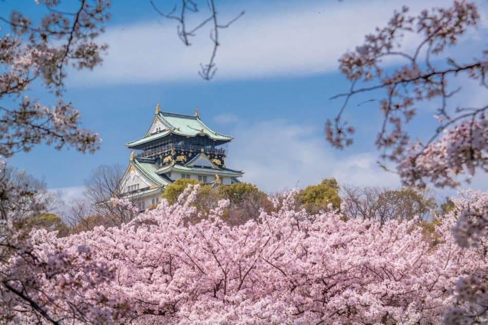 Castello di Osaka Primavera