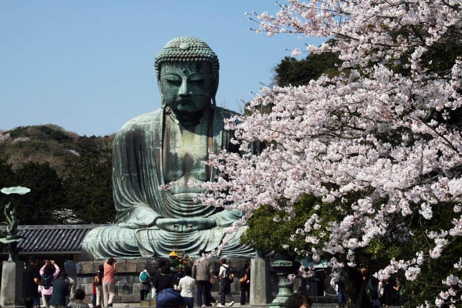 Kamakura durante la Fioritura dei Ciliegi