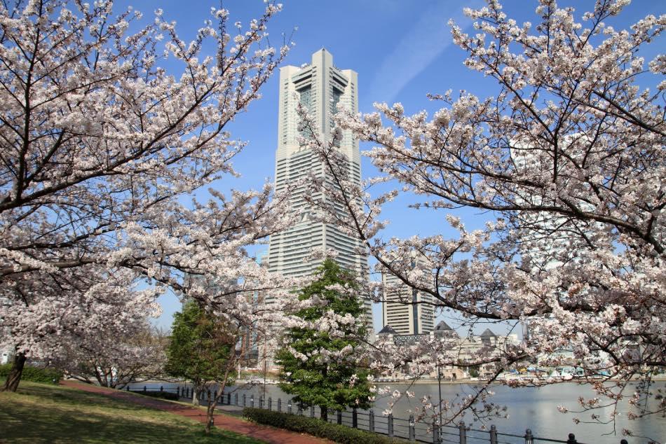 Torre di Yokohama Primavera
