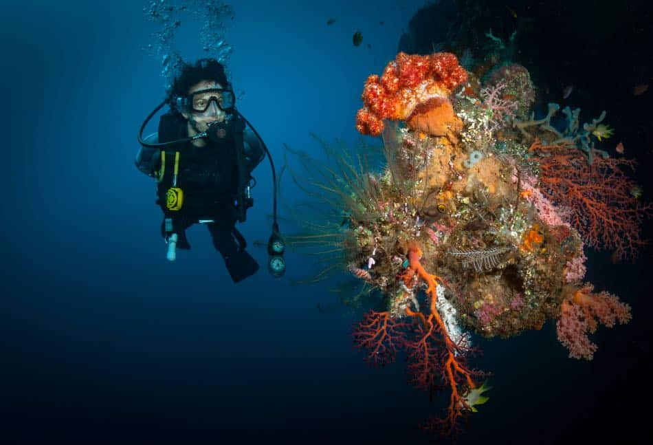 barriera corallina a tulamben bali